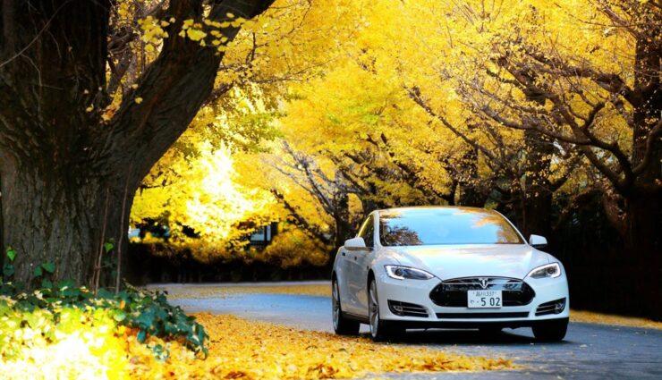 Tesla Motors erwartet von japanischen Partnern größere Risikobereitschaft