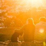 solarcity-airbnb-partnerschaft-tesla-rabatt