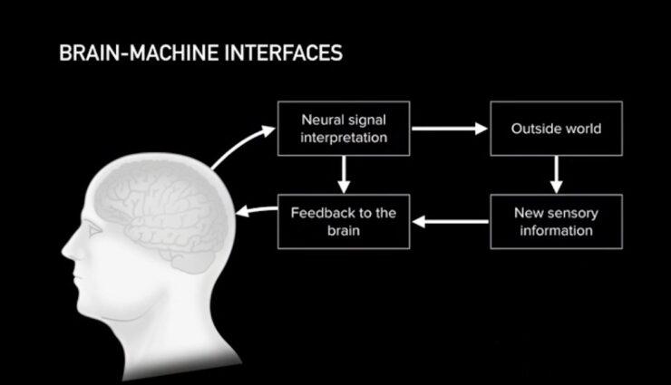 neuralink brain machine interface schaubild