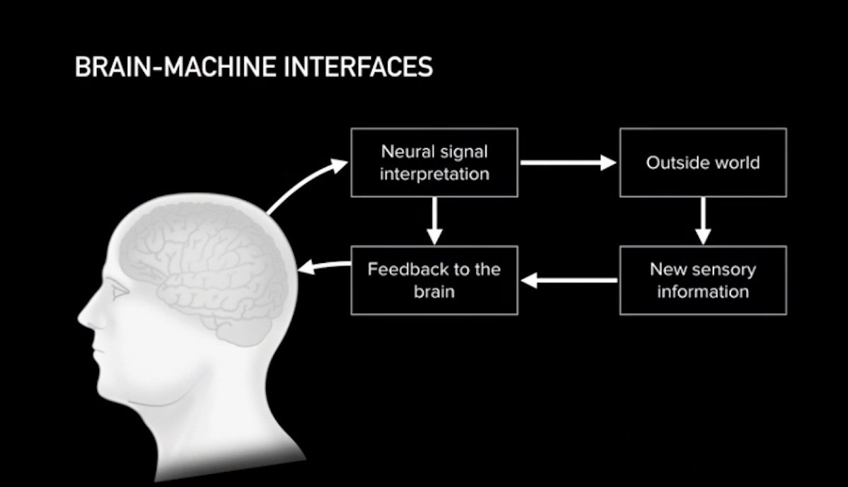 neuralink brain machine interface schaubild
