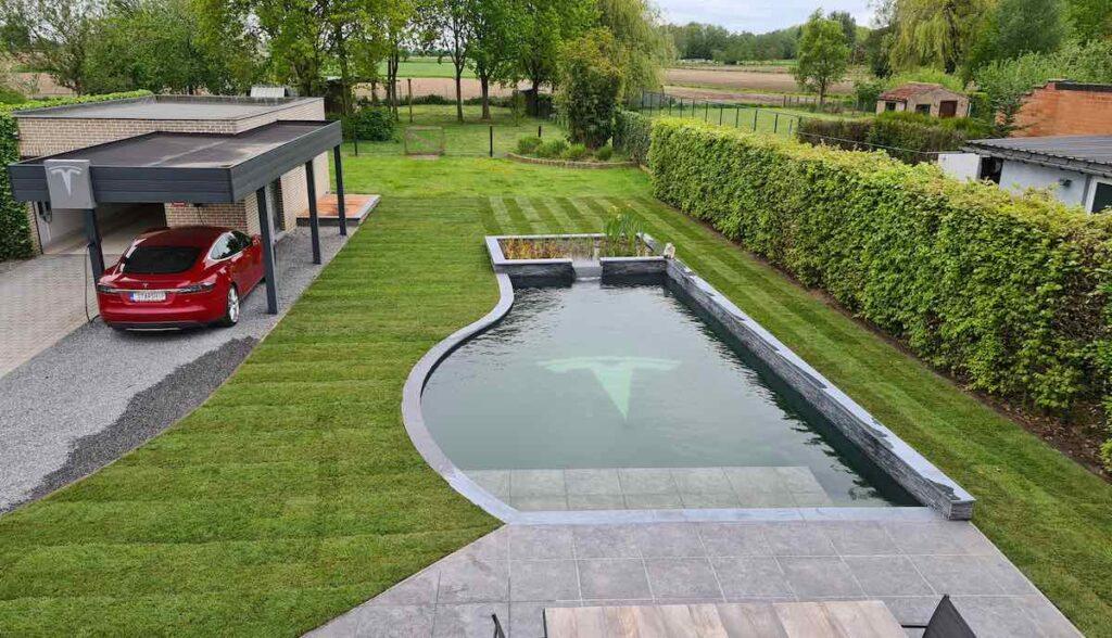 tesla fan belgien pool model-s